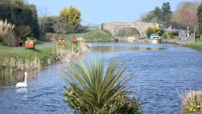 Historic 130km Royal Canal Greenway from Maynooth to Clondra officially launches today
