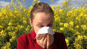 Healthy Eating: How your diet can help relieve your hayfever symptoms