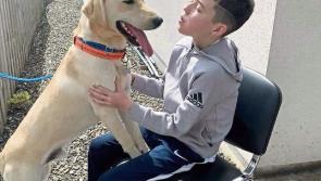 Novel head shave fundraiser in memory of brave Killashee schoolboy Cian Neary
