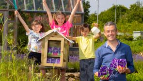Applications for Community Seed Libraries wanted from Longford