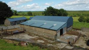 GALLERY | Superb 100 acre Longford fattening farm to be sold at auction