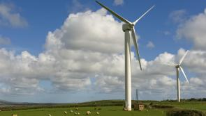 Bord na Mona Derryadd windfarm plans dealt blow as opposition group granted judicial review