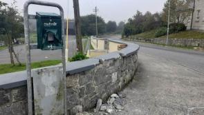 Ballymahon Cllr hits out at 'idiotic' poop scoop vandals