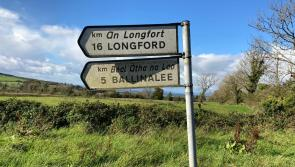 Calls for a stop to abuse of road signs in county Longford