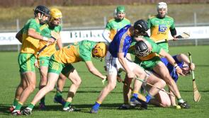 Crucial  second half goals give Donegal  the  edge over the Longford hurlers