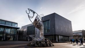 IT Sligo takes step towards Technological University status