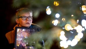 Irish Cancer Society commemorates 9,000 lives lost this year with 9,000 lights