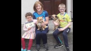 Longford vet in Wild Atlantic Way virtual fundraiser for Cian's Kennels