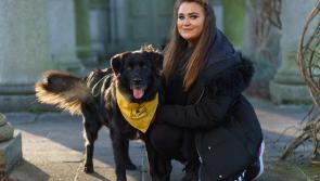 Brain surgery survivor and her 'furry friend' embark on charity walking challenge