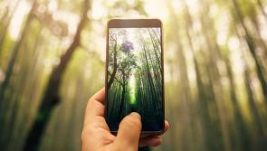 Top tips for taking stunning lockdown photography with a smartphone