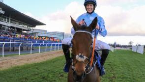 Unbeaten Honeysuckle bids for more Dublin Racing Festival glory this weekend