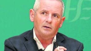 'Amazing decline' - HSE chief gives brilliant Covid-19 hospital update