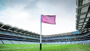 GAA Congress 2021: Hurling sin bin, World GAA, doping, fixtures and plenty more on the menu