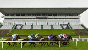 Live coverage of Limerick Races on TG4 this Sunday