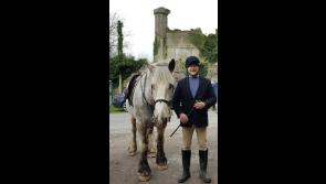 Ballymahon and surrounding areas shocked by death of  gifted horseman Fergal Trayers