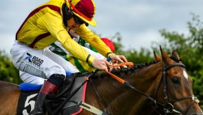 Rank outsider wins Irish Grand National at Fairyhouse