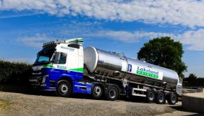 Lakeland Dairies reports revenue growth and uplift in profits
