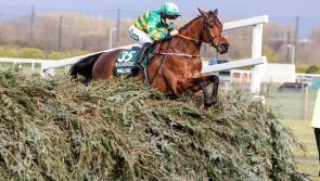 Kilbeggan Races to host new two day spring meeting