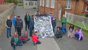 Pupils at Longford primary school St John's highlight environmental issues in Eco Art project
