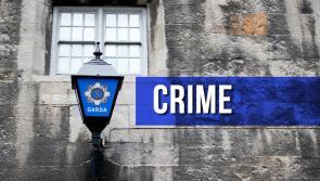 Gardaí in Granard seize €8,000 worth of cannabis plants in Moyne