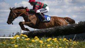 Longford trainer in winners enclosure as Clever Currency lands maiden hurdle at Limerick