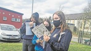 Ballymahon Vocational School students show entrepreneurial flair