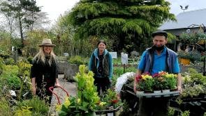 Granard leading the charge for National Biodiversty Week 2021