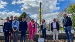 Longford's online Padraic Colum Gathering a success