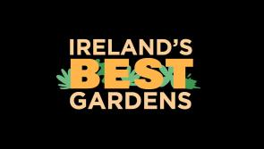 Are you Ireland's best gardener? - RTE show seeks to find out