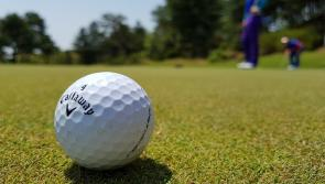 Man who was hit on head with golf ball loses high court action