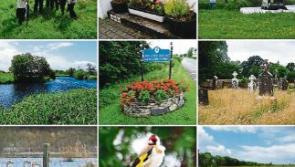 Newtownforbes Tidy Towns adopts new five-year plan