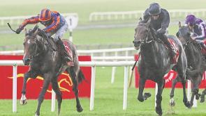 Racing: Ticket arrangements for Dubai Duty Free Irish Derby released