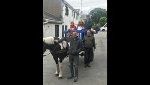 A throwback to yesteryear as horse drawn cart arrives in Lanesboro with delivery of wool