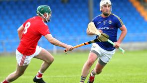 Magnificent Longford hurlers hammer Louth in the Lory Meagher Cup