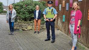 Anti-social behaviour crackdown in Longford walkways underway