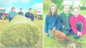 Down Memory Lane   A selection of lovely Longford memories from the 1999 archive