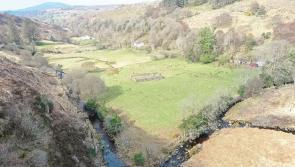 Feeling lucky? GAA club raffling a field for just £20 in novel fundraiser