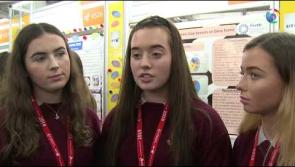 WATCH |  Ballymahon students survey 100 farmers as part of their project for55th BT Young Scientist & Technology Exhibition #BTYSTE