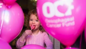 Volunteers needed in Kildare for Lollipop Day 2019