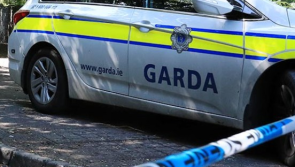Update | Gardaí complete Ballinagh search and appeal for dashcam footage in Kevin Lunney assault investigation