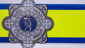 Leixlip Gardaí appealing for information after  fatal shooting last night