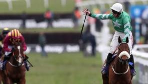 Longford's Presenting Percy jumps back into the 2021 Gold Cup picture