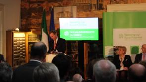 Video: Ballymahon and Longford set to benefit from Action Plan for Rural Development