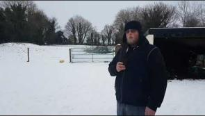 WATCH: Scantily clad Beast from the East still at large in Longford - Ballymahon brothers produce hilarious YouTube film