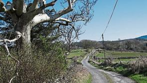 Non public roads and laneways in Longford set for €220k LIS cash injection