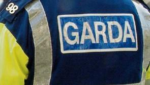 Gardaí in €10k Edgeworthstown drugs haul