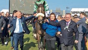 Former Taoiseach's son Philip Reynolds' horse upsets odds at Cheltenham