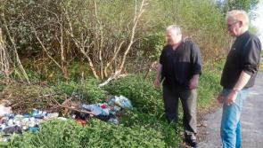 Illegal dumping near popular Longford tourist attraction