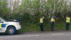 Gardaí continuing to carry out  searches in Cavan as part of investigation into Kevin Lunney assault