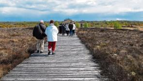 Corlea Trackway in top 10 things to do